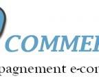 logo3-300x118